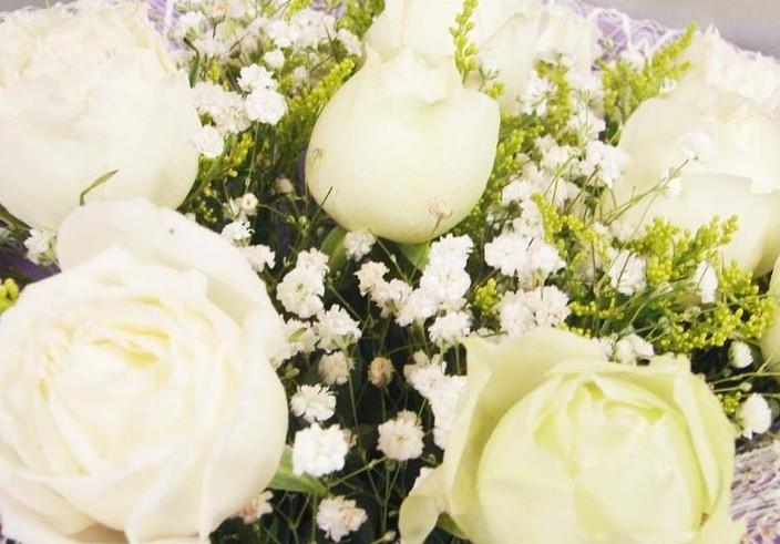 白玫瑰代表什么意思 白玫瑰花语大全